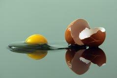 Broken egg. Broken chicken egg on glass surface Stock Image