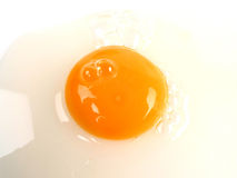 A broken egg detail Stock Photography