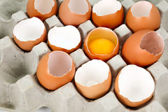 Broken egg and eggshells Stock Images
