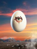 Broken egg  with eye inside Royalty Free Stock Photos
