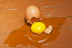 Broken egg on the floor Royalty Free Stock Photo