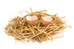 Broken egg in a hay nest Royalty Free Stock Photos
