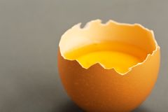 Broken egg isolated on gray background Royalty Free Stock Photos