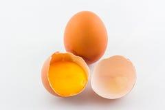 Broken egg. Royalty Free Stock Photography