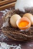 Broken egg in the nest. Brown broken egg in the nest. Wooden background Royalty Free Stock Photo