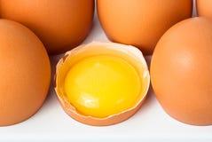 Broken egg in plastic cell Stock Image