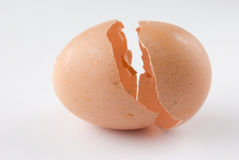 Broken egg shell Royalty Free Stock Photography