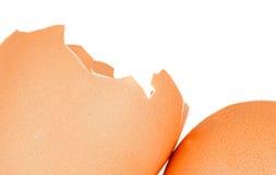 Broken egg shell Royalty Free Stock Photo