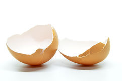 Broken egg shell Stock Image