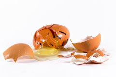 The Broken Egg Shell with Yolk Stock Image