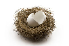 Broken egg shells in the nest Stock Photo