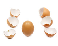 Broken egg shells Royalty Free Stock Image