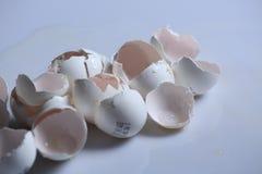 Egg shells. Broken egg shells on a white background stock photo