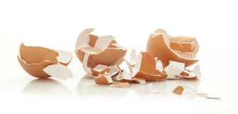 Broken Egg Shells on wihite. Background royalty free stock images