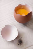 Broken egg on wooden base Stock Images
