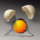 Broken Egg. Egg Yolk Splash royalty free illustration