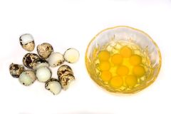 Broken eggs in bowl Stock Image