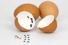 Broken Eggs shell on white background with cipping path. Eggshell isolated food concept life empty organic chicken brown nest footprint fresh bird crack nature royalty free stock photography
