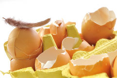 Broken eggs shells in box Royalty Free Stock Photography