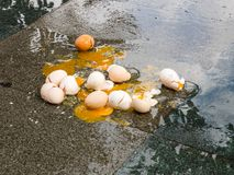 Broken eggs on wet asphalt, bad day in rainy weather. Close up image stock photos