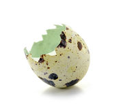 Broken eggshell Royalty Free Stock Images