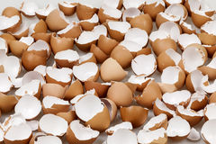 Broken eggshells royalty free stock photo