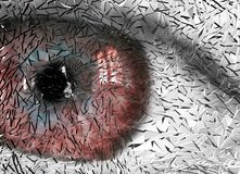 Broken eye Royalty Free Stock Images
