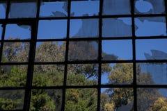 broken fönster Royaltyfri Bild