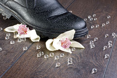 Broken feelings concept with two orchids Royalty Free Stock Photo