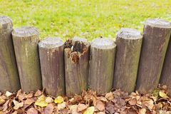 Broken fence, old wooden stockade, palisade, grass in background. Autumn leaves. Stock Photos