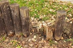 Broken fence, old wooden stockade, palisade, grass in background. Autumn leaves. Stock Photo