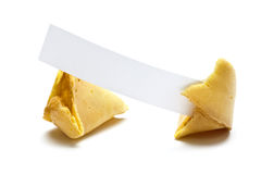Broken fortune cookie with blank message tag Stock Photography