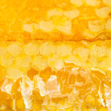 Broken fresh yellow honey comb Stock Photo