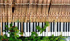 broken gammalt piano Arkivfoto