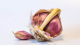 Broken garlic Stock Images