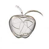 Broken glass apple. 3D rendering Royalty Free Stock Images