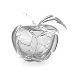 Broken glass apple Royalty Free Stock Photography