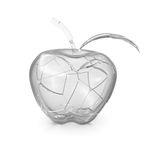Broken glass apple Royalty Free Stock Image
