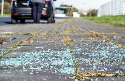 Broken glass on the asphalt Royalty Free Stock Photos