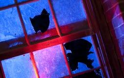 Broken Glass brott Arkivfoton