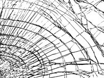 The broken glass.The cracks texture white and black. Vector background.Grunge.Abstract lines vector illustration