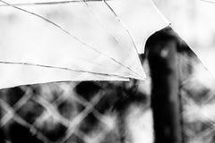 Broken Glass Grayscale Royalty Free Stock Photo