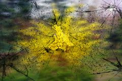 Broken glass texture. Realistic cracked glass effect, concept element stock images