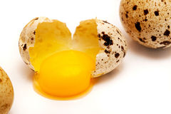 Broken in half quail egg. Broken in half with a quail egg yolk on a white background Royalty Free Stock Images