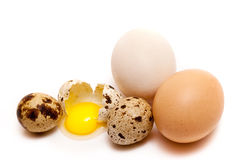Broken in half quail egg. Broken quail egg in a group of quail and chicken eggs on white background Stock Image
