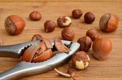 Broken hazelnut Stock Image