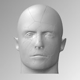 Broken head, 3d illustration. The split face of a person Royalty Free Stock Photos