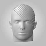 Broken head, 3d illustration. The split face of a person Royalty Free Stock Images