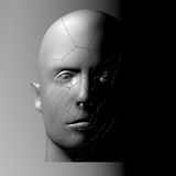 Broken head, 3d illustration. The split face of a person Stock Images
