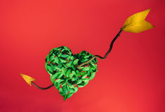 Broken heart Royalty Free Stock Images